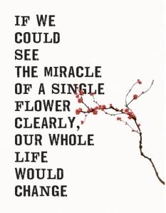 Miracle flower crop